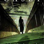 Na de brand – Jane Casey