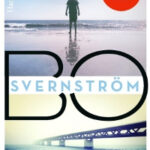 Wie zonder zonde is – Bo Svernström